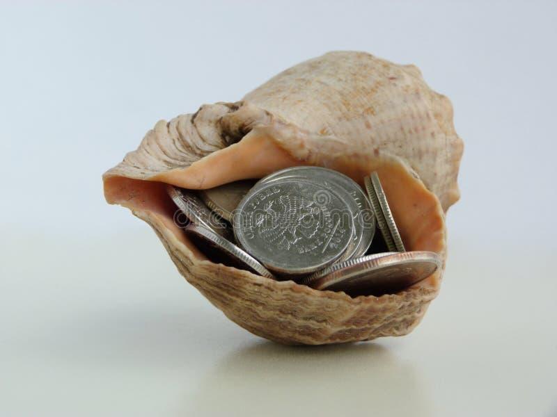 Mynt i skal arkivfoto