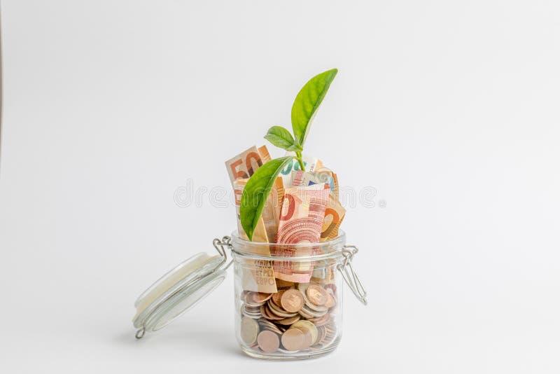Mynt och räkningar i en glass krus som isoleras på vit, med den gröna växten, lämnar att växa inom den royaltyfri bild