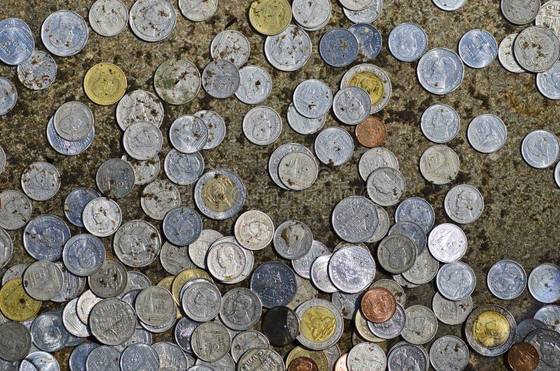 Myntar donation royaltyfri foto