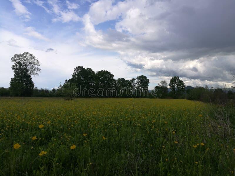 Myplace beautifuelsky de Natur Bosnie photographie stock