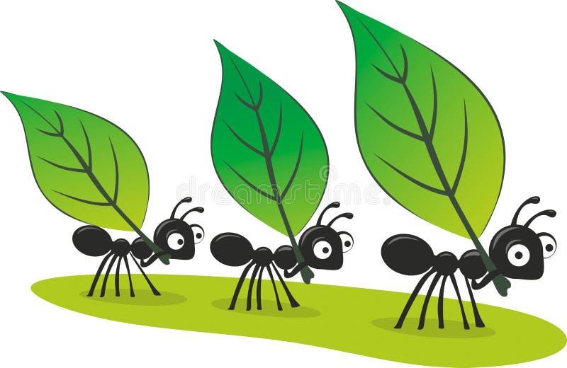Myror vektor illustrationer