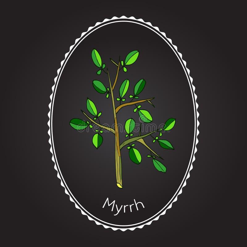 myrrh ilustração stock