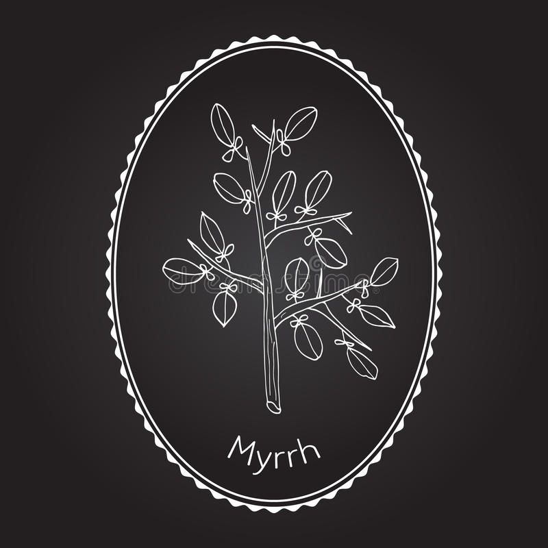 myrrhe lizenzfreie abbildung