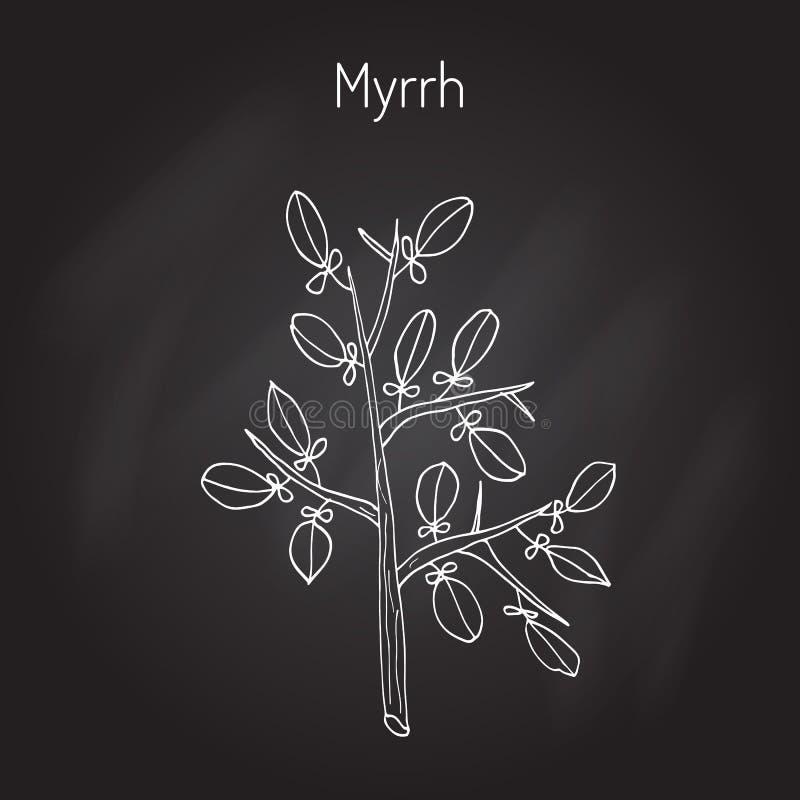 myrrhe stock abbildung