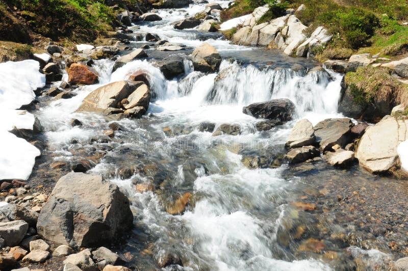 Myrte Falls at Mount Rainier National Park Washington USA royalty-vrije stock fotografie