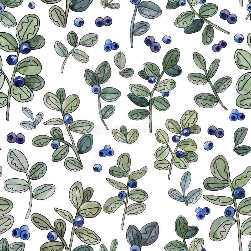 Myrtille Illustration botanique d'aquarelle Configuration sans joint Type rustique photo libre de droits