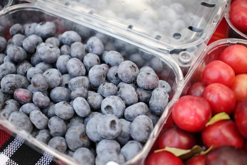 Myrtille Texture de fond de myrtilles Plein cadre des fruits Vitamines et concept de régime Consommation saine v?g?tarien image stock