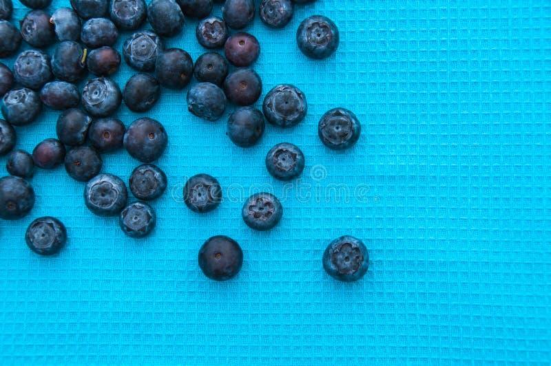 Myrtilles sur un fond bleu photo libre de droits