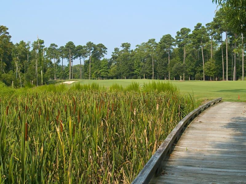 Myrtle Beach golfbana royaltyfria bilder