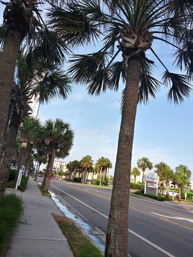 Myrtle Beach imagens de stock