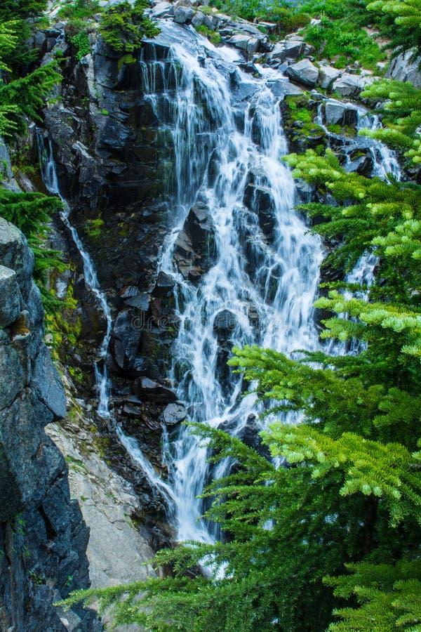 Myrtle Falls - supporto Rainier National Park immagini stock