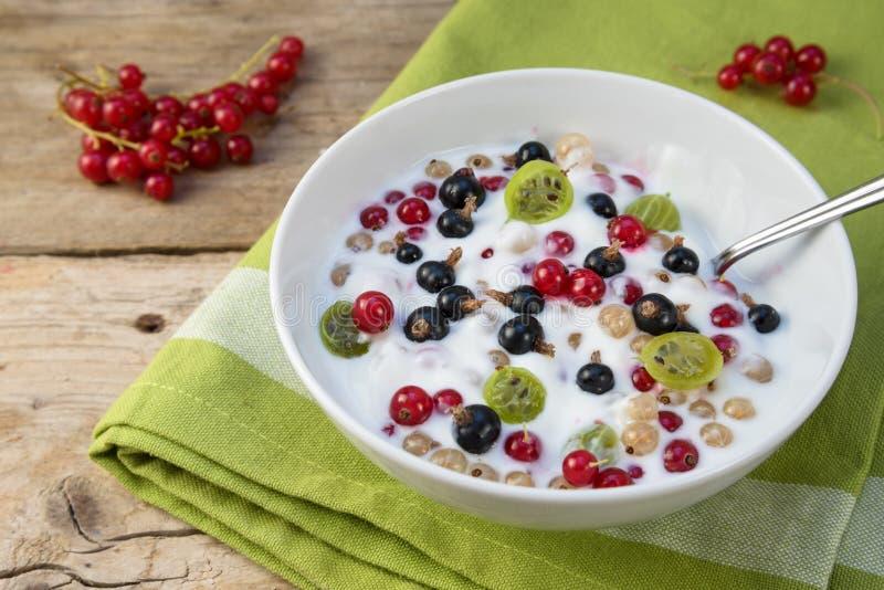 Mysli med naturlig yoghurt, ostmassa och nya bär, sund bre arkivbilder