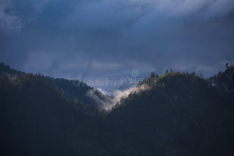 Myst en la montaña fotografía de archivo libre de regalías
