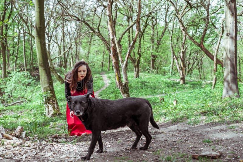 Mysteriöse Frau mit einem schwarzen Hund stockfotos