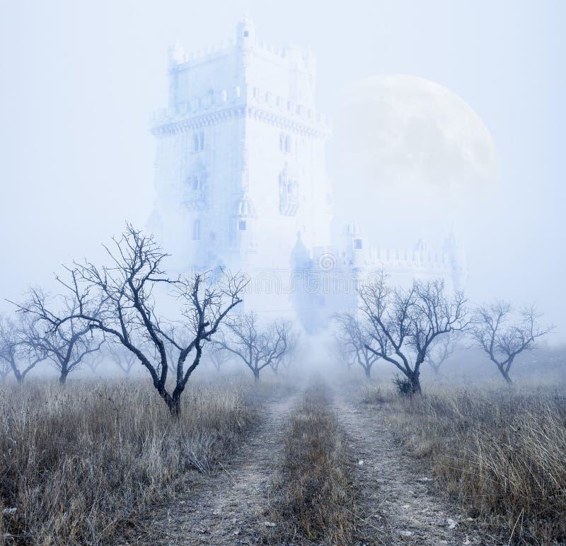 Mysteriöse nebelige Landschaft stock abbildung