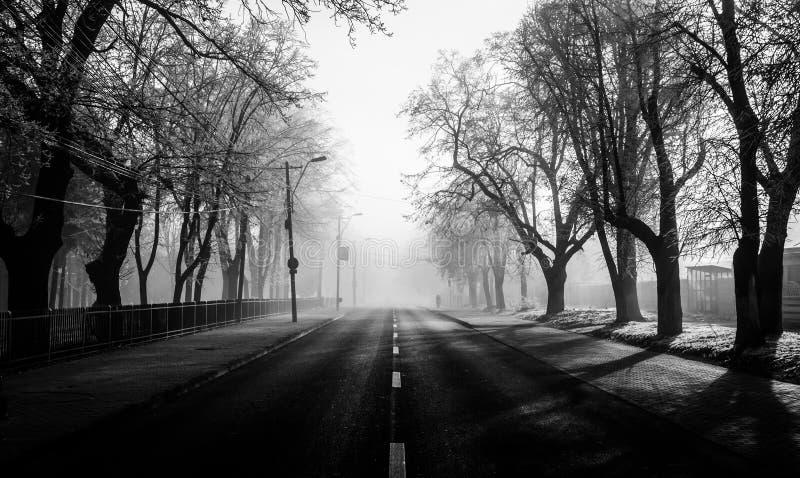 Mysteriöse Straßen mit Nebel stockbilder