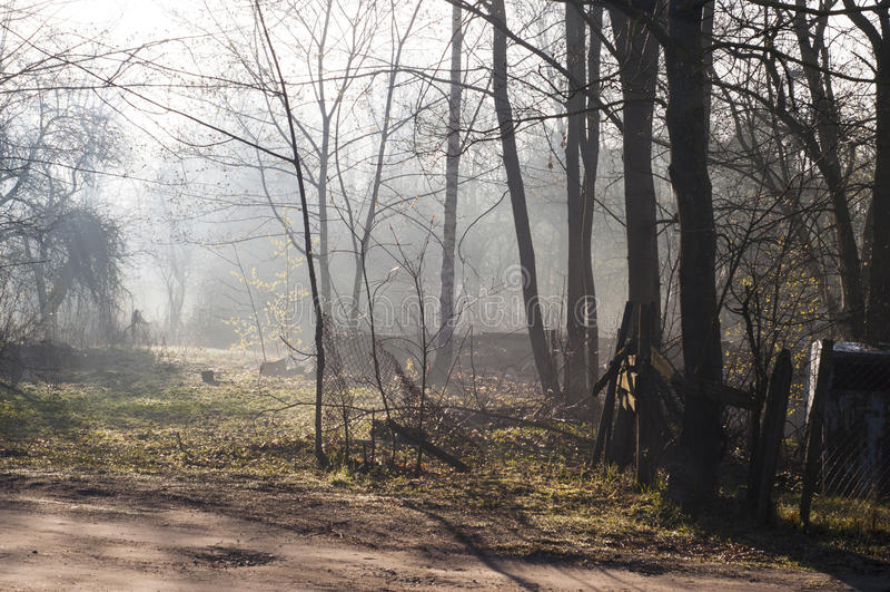 Mysteriöser furchtsamer, verlassener Garten, Weinlese tonte Farben Sahniger Nebel unten im Tal stockbilder