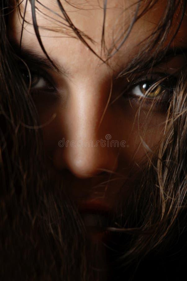 Mysterie in haar ogen stock fotografie