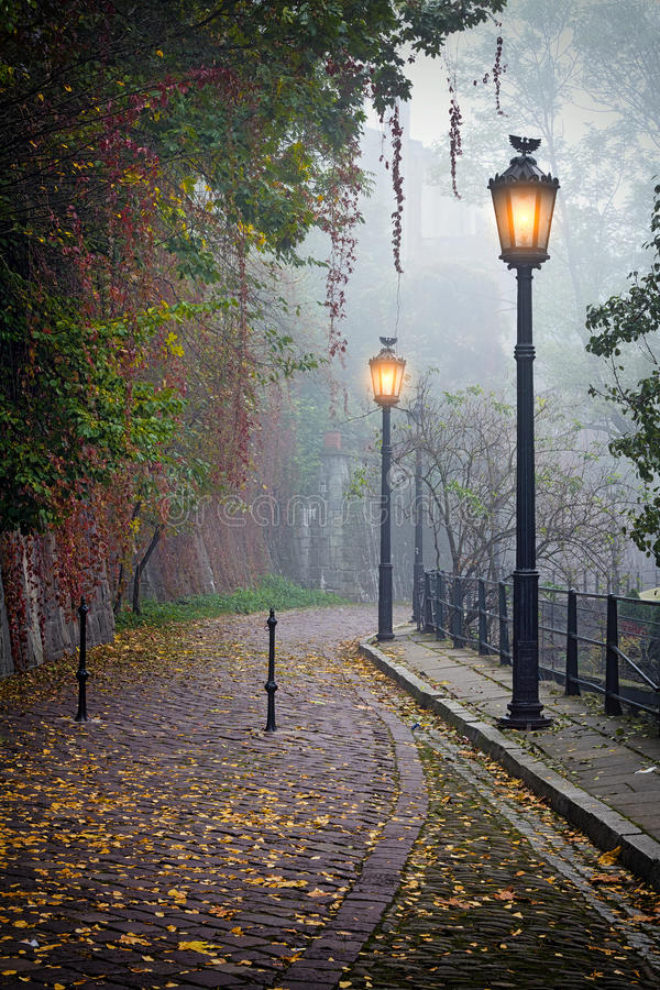 The mysterious alleyway in foggy autumn time stock photo