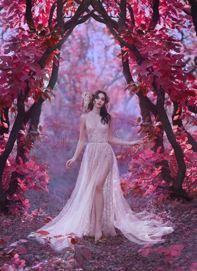 Mysterious attractive lady in a long light luxury dress in a magical pink forest, gate to the fairy-tale world, cute. Witch owl sits on the shoulder of dark royalty free stock photos