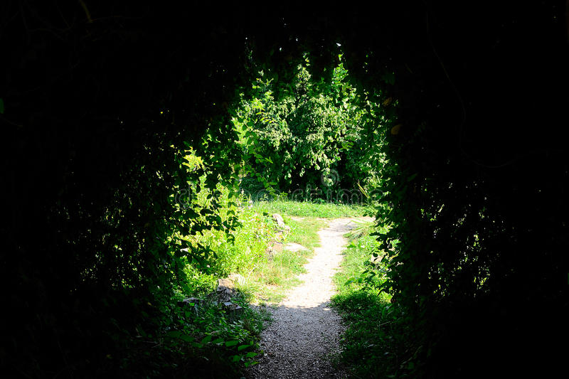Download Mysterious Cave stock image. Image of garden, flowers - 20793649