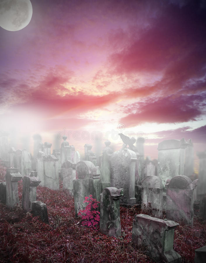 Download Mysterious cemetery stock illustration. Image of grass - 26398563