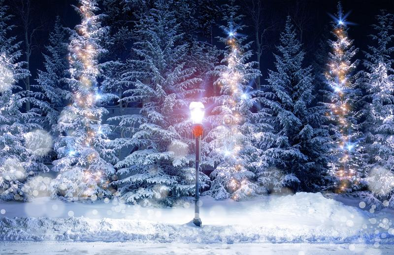 Mysterious Christmas Alley. With Bright Vintage Style Lamp Post and Fir Trees Under Snow. Snowy Christmas Scenery with Holiday Decoration royalty free stock image