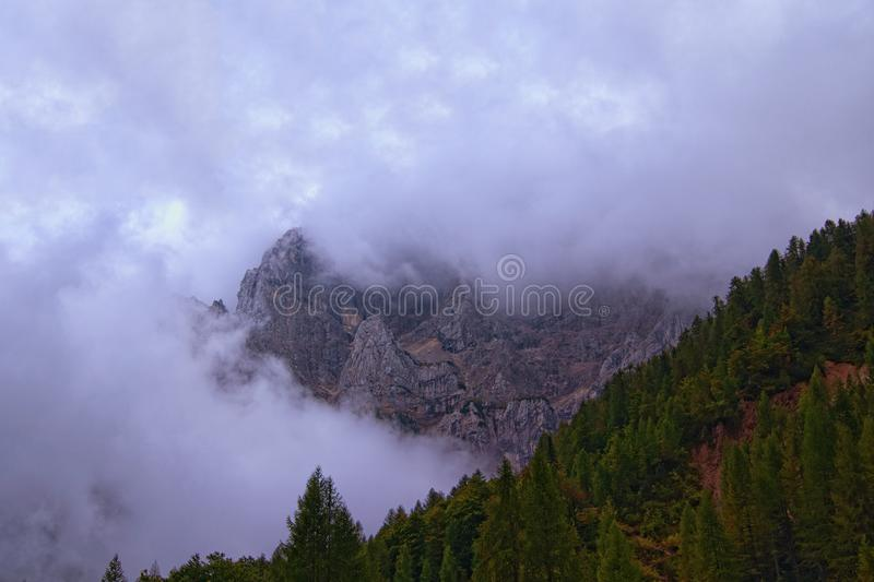 Mysterious foggy landscape of forest on the mountain slope in a nature reserve. High rocky mountain in thick fog in the background. Concept of landscape and stock photos
