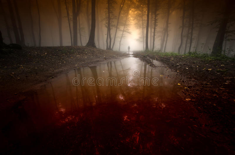 Mysterious forest on Halloween with red bloody water and man royalty free stock photo