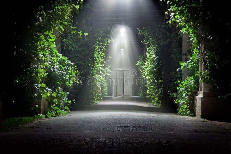 Mysterious garden royalty free stock photos
