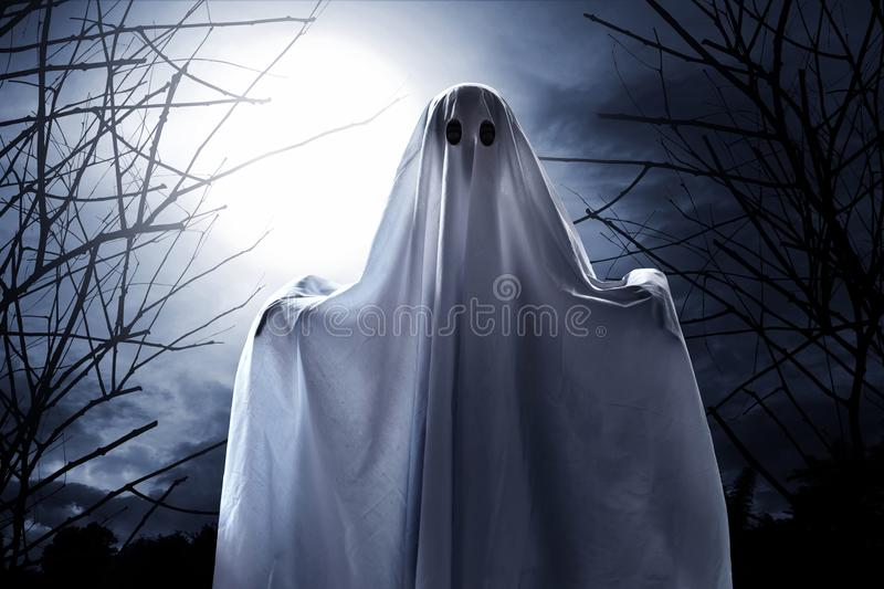 Mysterious ghost on the forest royalty free stock photos