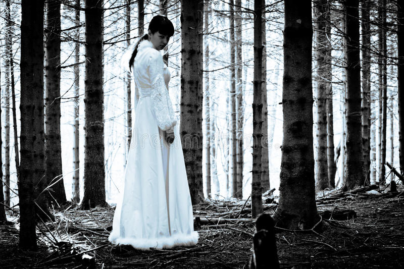 Mysterious girl in dark spooky forest. Woman with long black hair in white dress in the spooky dark forest royalty free stock photography