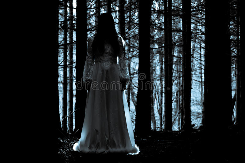 Download Mysterious Girl In Dark Spooky Forest Stock Photo - Image: 27580928