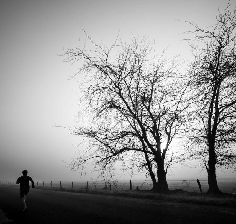 Mysterious greyscale shot of a male walking in a foggy scary field. A mysterious greyscale shot of a male walking in a foggy scary field stock photo