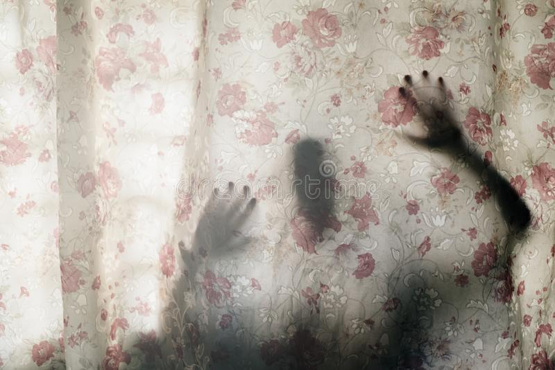 Mysterious human shadow behind a curtain. Fear, Mystery, scary, creepy and paranormal concept stock photography