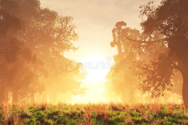 Mysterious Magical Fantasy Fairy Tale Forest Sunset Sunrise. 3D artwork stock photos