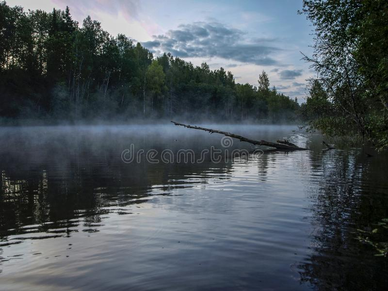 A mysterious morning on the lake, water like a mirror. White mist, lovely reflections, latvia royalty free stock image