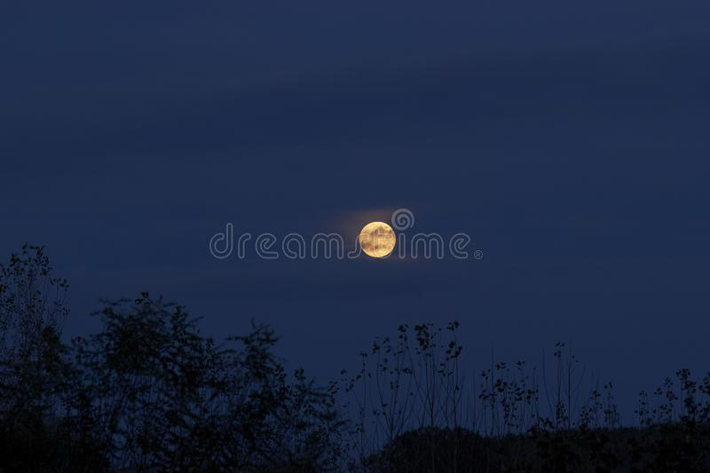 Mysterious night sky with full moon.Dramatic clouds in the moonlight from full moon royalty free stock images