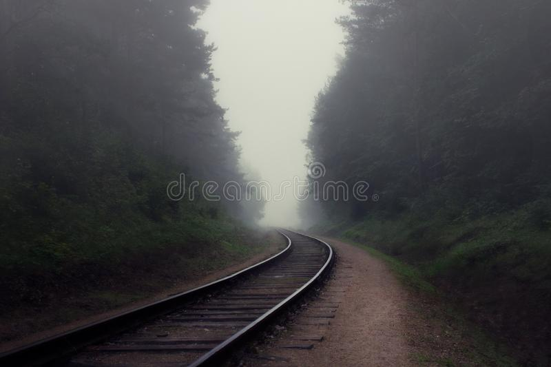 Mysterious scene with railroad and foggy forest royalty free stock image