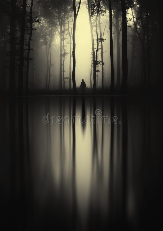 Mysterious silhouette reflecting in forest lake stock images