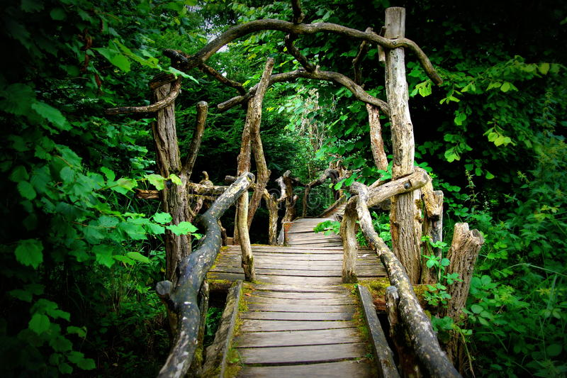 Mysterious spooky boardwalk forest entrance royalty free stock photo