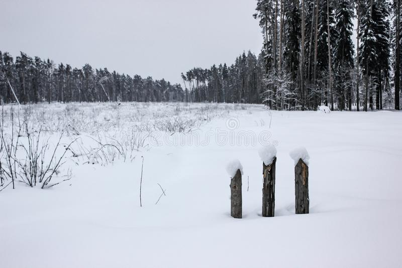 White Fairy Tale - Winter Forest Landscape and Snow - 4 stock image