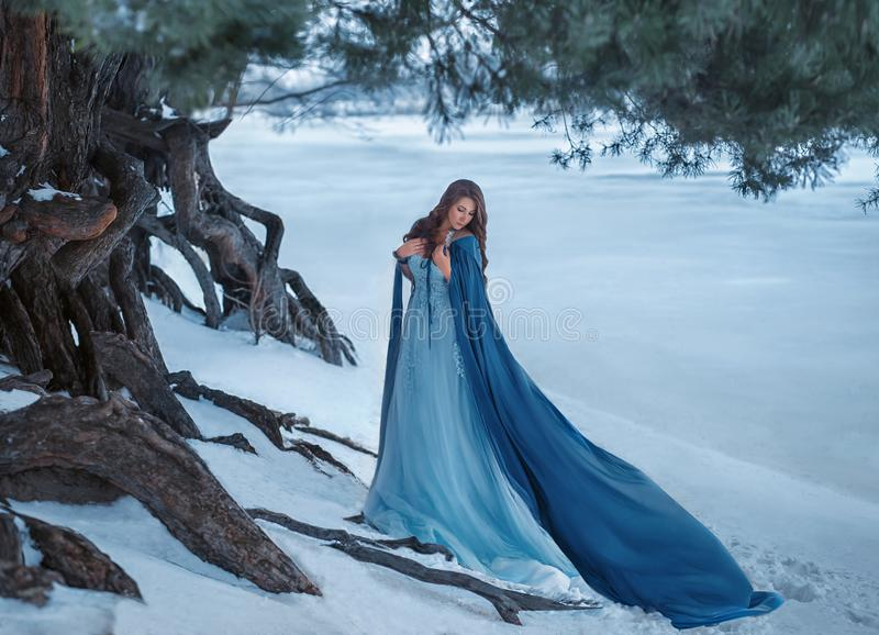 A mysterious wanderer in a luxurious dress and a blue cloak that flutters in the wind. On the background of a frozen royalty free stock images
