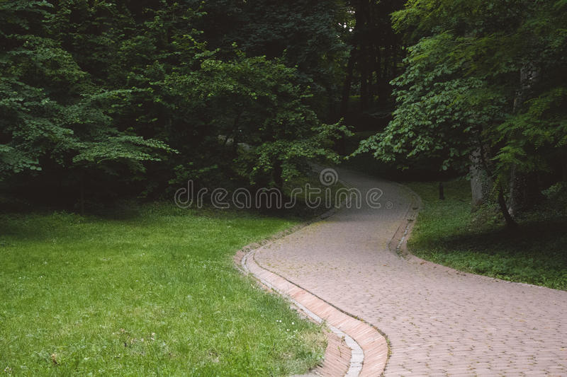A mysterious way. When you see the way like this what do you think of? Maybe it's the way to nowhere, but it also may lead you to find something new. Buy this stock photos