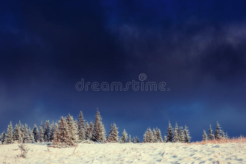 Mysterious winter landscape majestic mountains. In winter. Magical winter snow covered tree. Europe. Happy New Year. In anticipation of the holidays stock photo