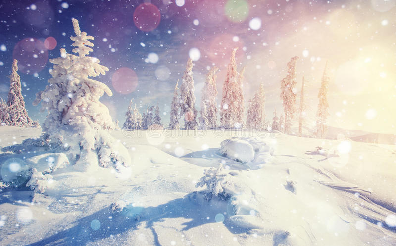 Mysterious winter landscape majestic mountains vector illustration