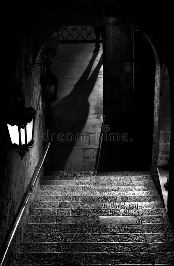 Download Mystery Man stock image. Image of abstract, shadow, elegant - 22060537