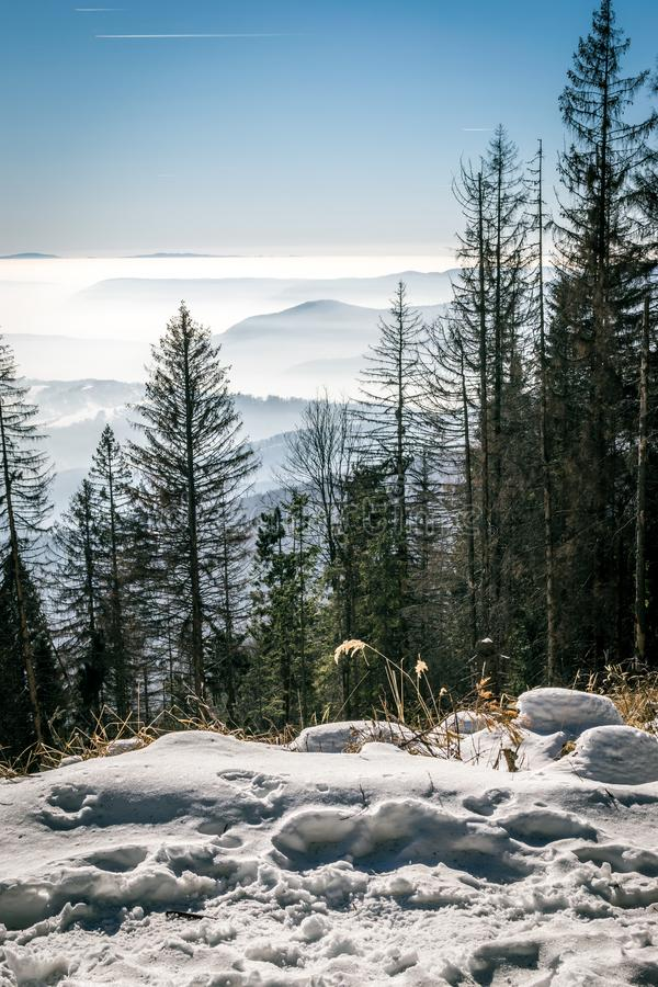 Mystery mountains in the winter right view royalty free stock photo