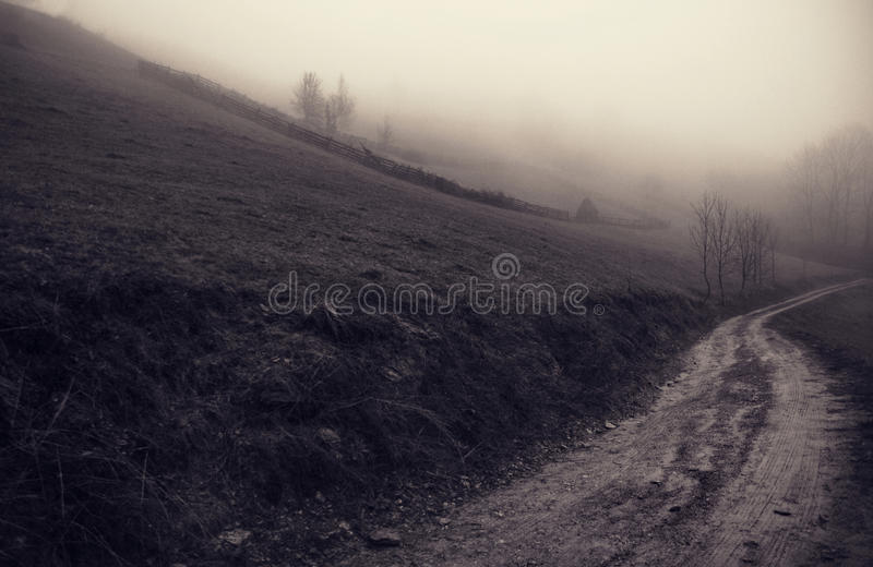 The mystery out of mist. Sacelului Mount royalty free stock photo
