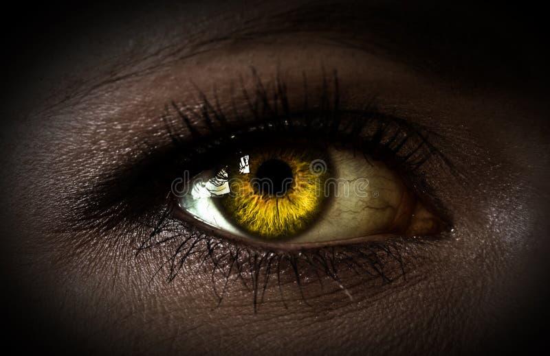 Mystery woman eye stock photos
